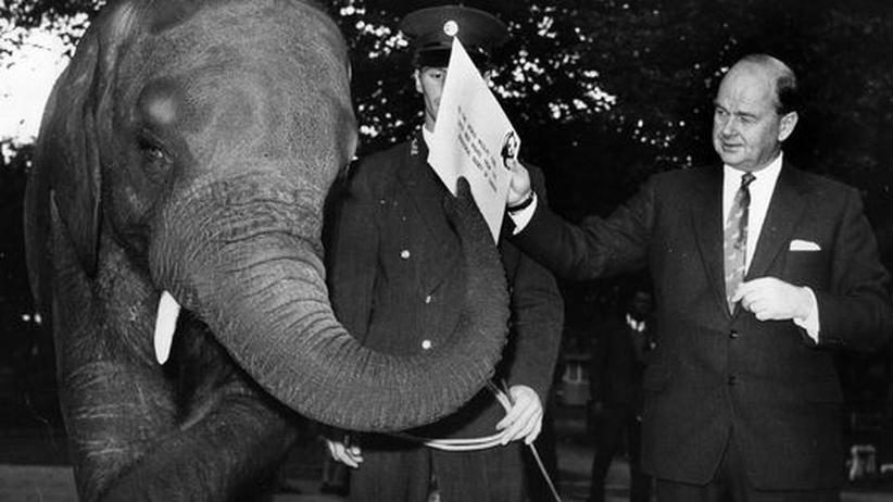 Umweltschutzorganisation: September 1965 im Londoner Zoo: Ein Elefantenjunges überreicht dem Vorsitzenden des World Wildlife Fund, Peter Scott, einen Scheck