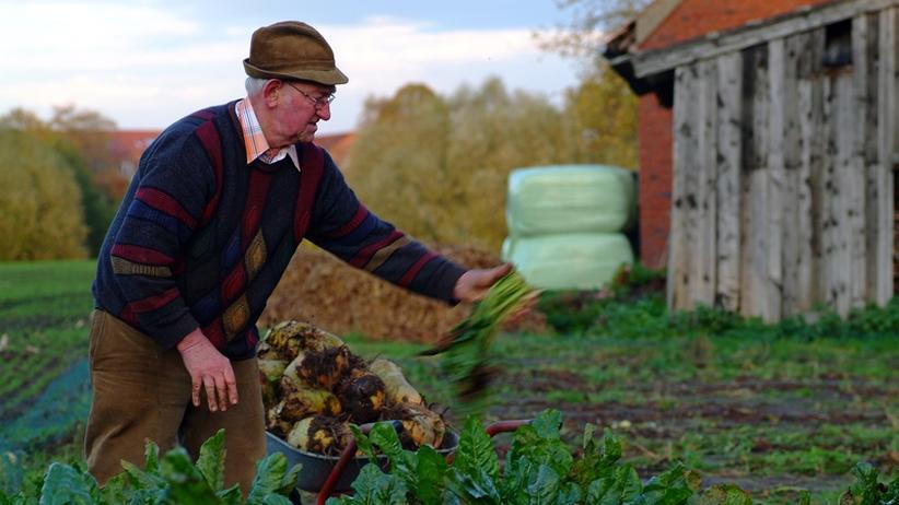 Agrarwirtschaft: Die letzte  Planwirtschaft