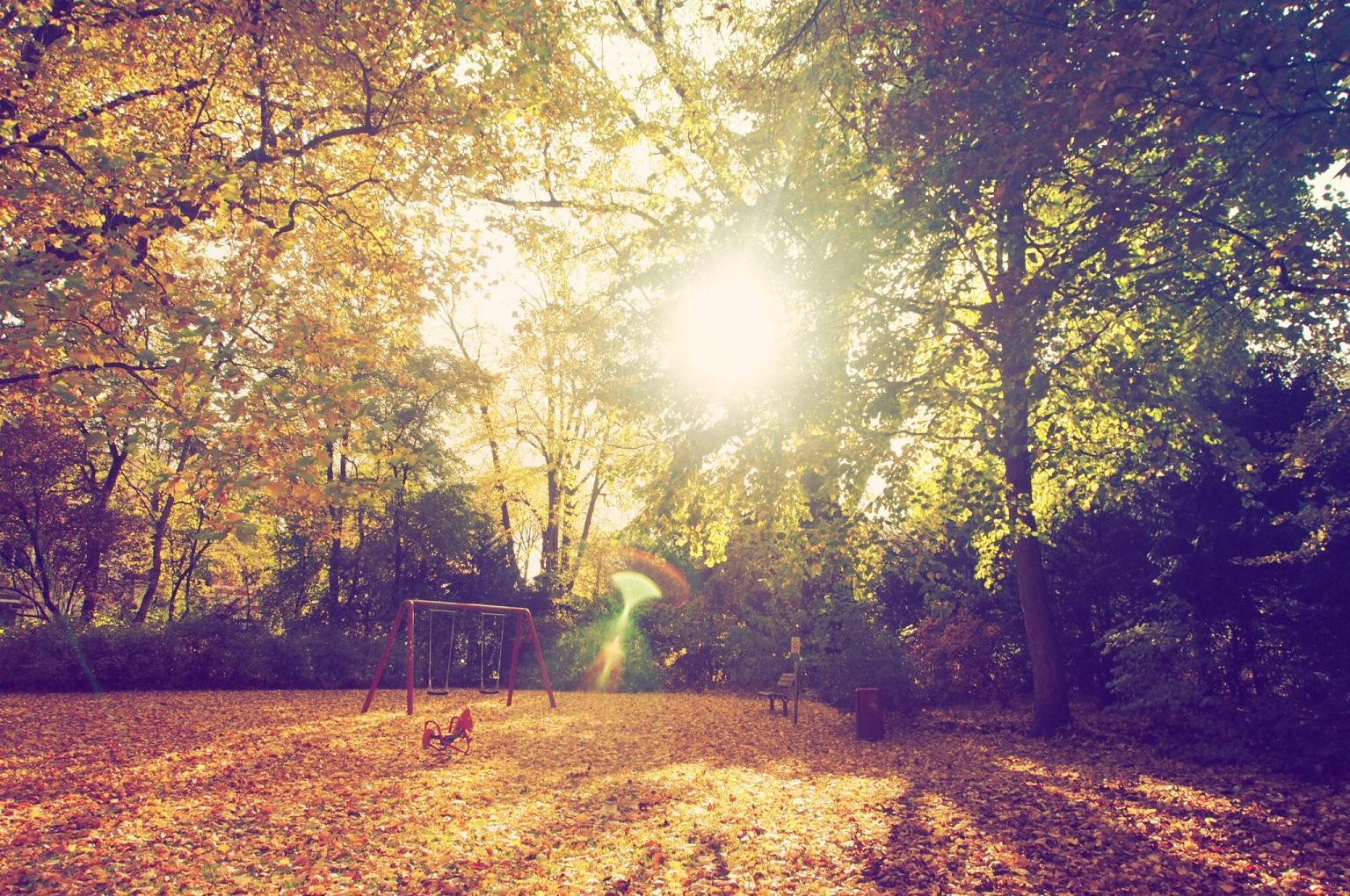 Die Blätter sind im Herbst doch das schönste Spielzeug.