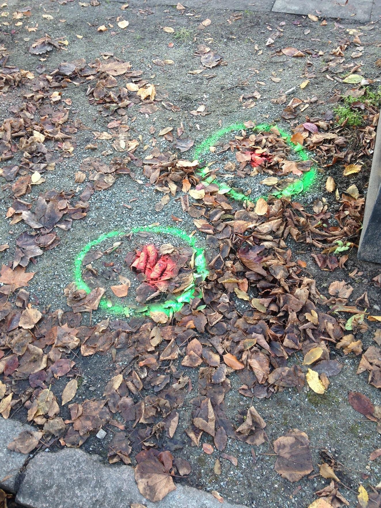 """Am letzten Sonntagsspaziergang habe ich das """"Winterhuder Tretminenfrühwarnsystem"""" kennenlernen dürfen (gesehen in der Andreasstraße).  Leider hat es mich nicht davor gerettet, in einen anderen Haufen zu laufen – aber der war auch nicht mit Signalfarbe gekennzeichnet..."""