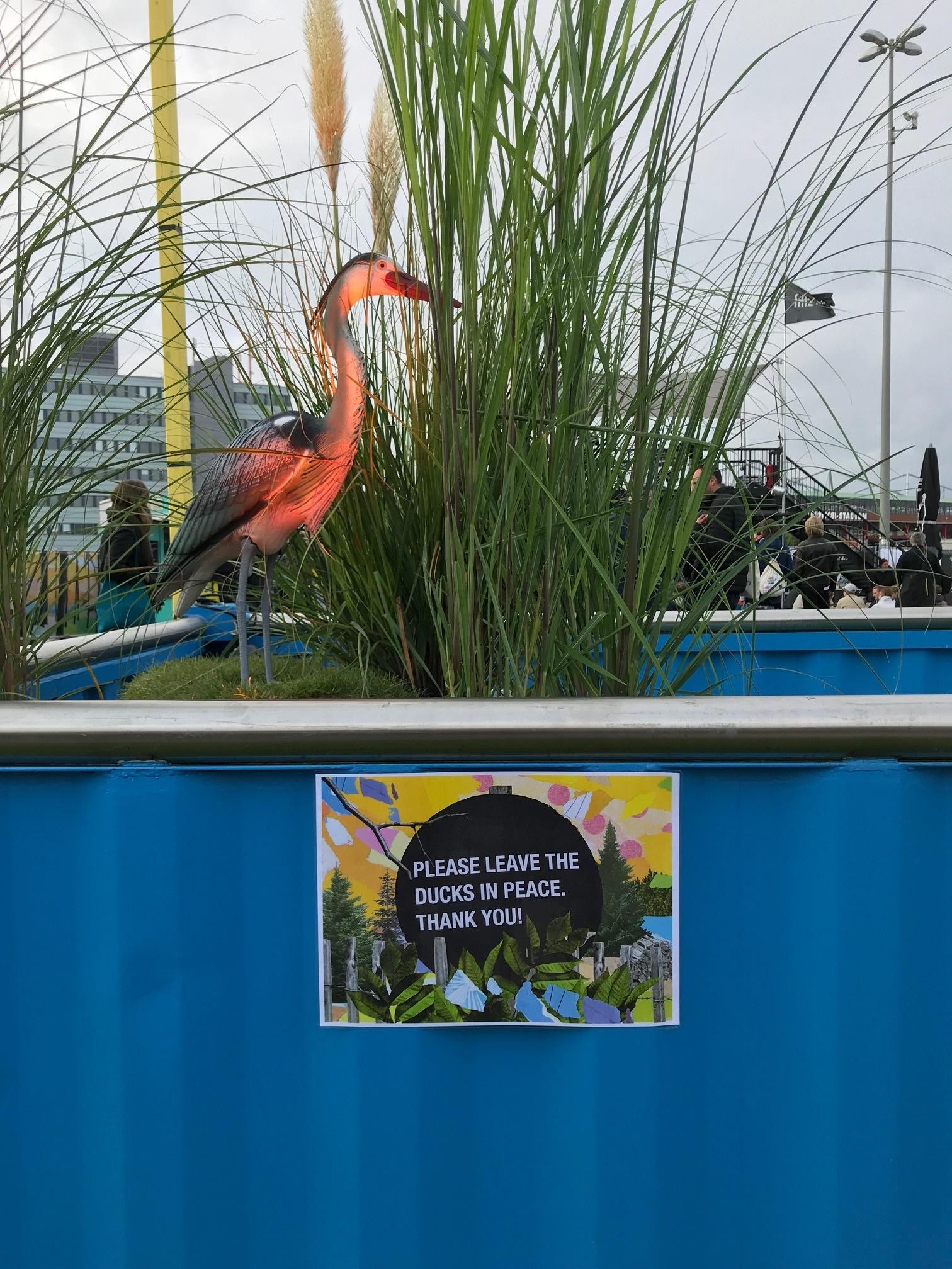 Gut bewachte Enten beim Reeperbahn Festival, Festival Village, Heiligengeistfeld.