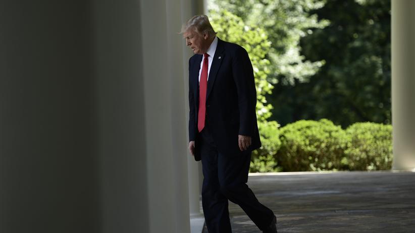 """Klimaschutz: """"Trumps Auftritt könnte dem Klima einen Dienst erweisen"""""""