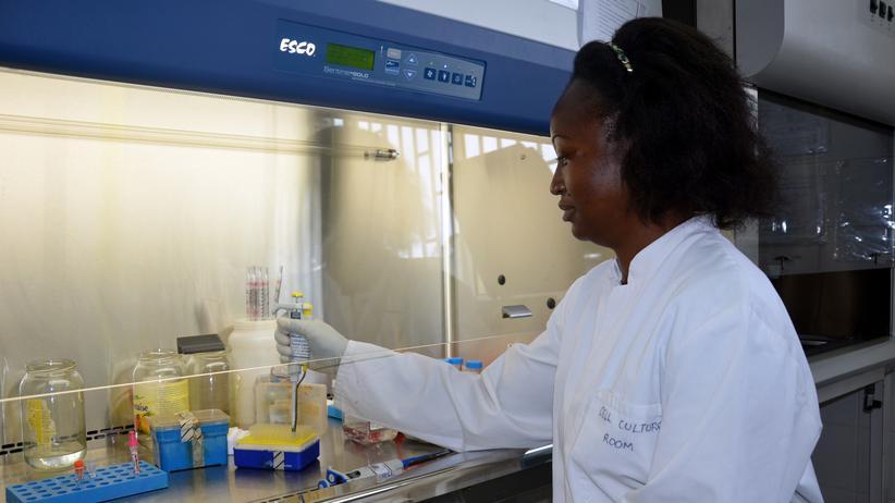 Malaria: Ein Wissenschaftlerin mit Blutproben von Kindern, die gegen Malaria geimpft wurden.