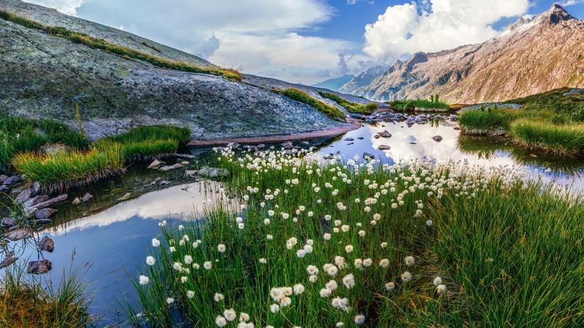 Wandern in der Schweiz: Am Grimselpass in den Berner Alpen