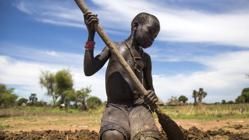 """Ernährung: """"Was wir erleben, ist Hunger im Paradies"""""""