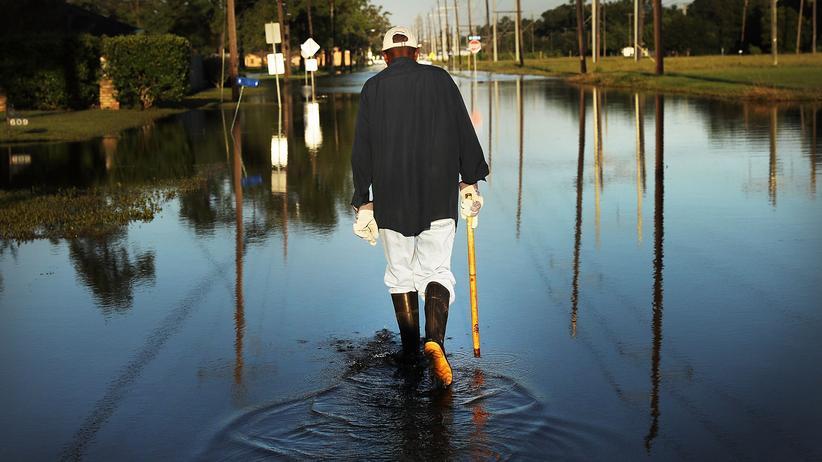 Texas: Erst die Flut, dann die Mückenplage