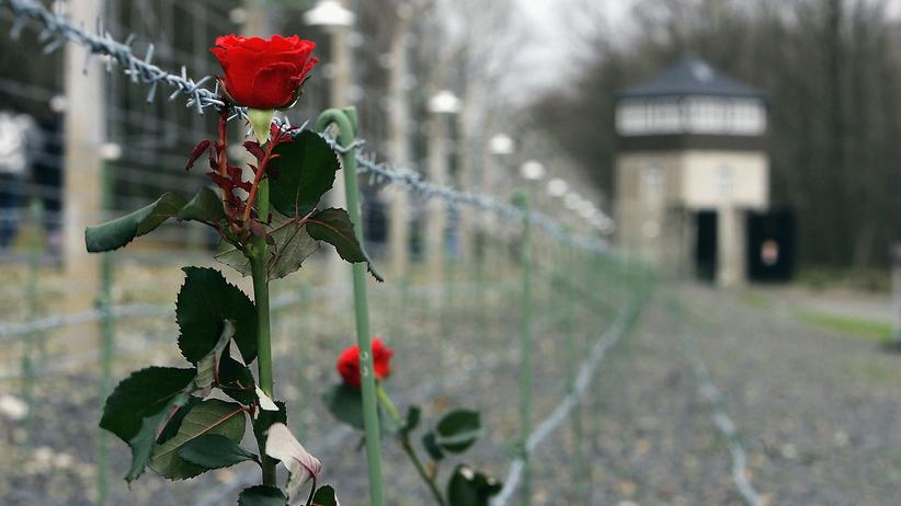NS-Zeit: Eine Rose am Zaun der Gedenkstätte Buchenwald