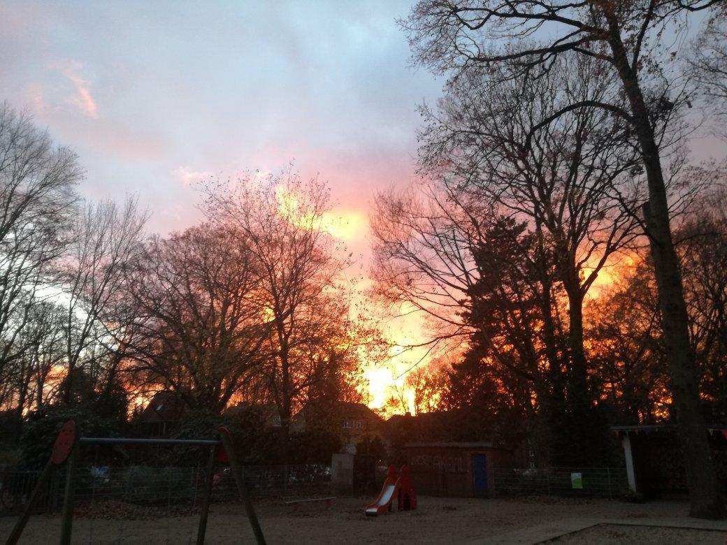 Ja, wir haben verstanden! Sie lieben dramatische Sonnenuntergänge! Gestern erreichten uns viele Bilder vom Hamburger Abendhimmel, der am Dienstag rosarot leuchtete. Hier sehen Sie, wie die untergehende Sonne die Bäume im Stadtpark brennen ließ – aber nehmen Sie das bitte nicht wörtlich! Ein Mann aus Langenhorn rief sogar die Feuerwehr, weil er beim Anblick der rot getünchten Wolken einen Brand in der Nachbarschaft vermutete. In der Notrufzentrale konnte man ihn schnell beruhigen. Es komme immer wieder mal vor, dass Leute das Abendrot mit Flammen verwechselten, sagte ein Sprecher der Feuerwehr.
