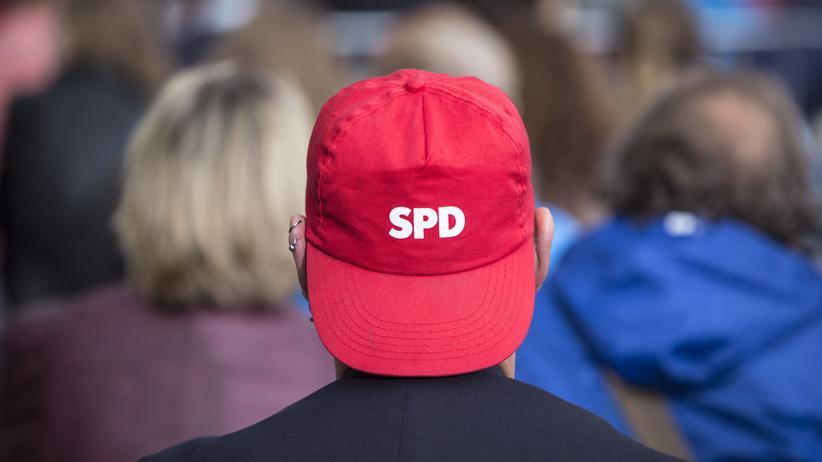 Parteien: Der neue Purismus