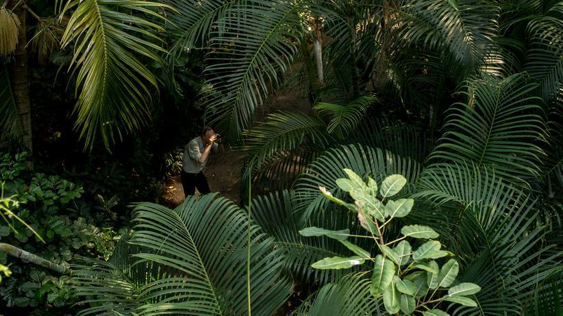 Carel van Schaik: Vertrieben aus dem Paradies