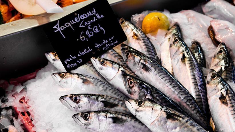 Nachhaltigkeit: Ist frischer Fisch besser als tiefgefrorener?