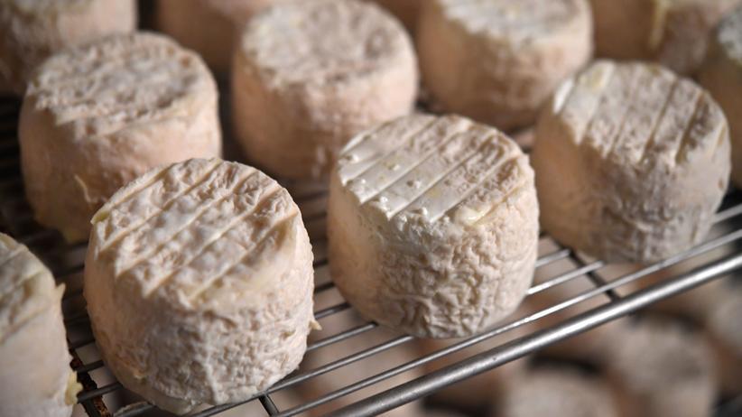 Käsereifung: Kann man Käse zu Hause altern und reifen lassen?