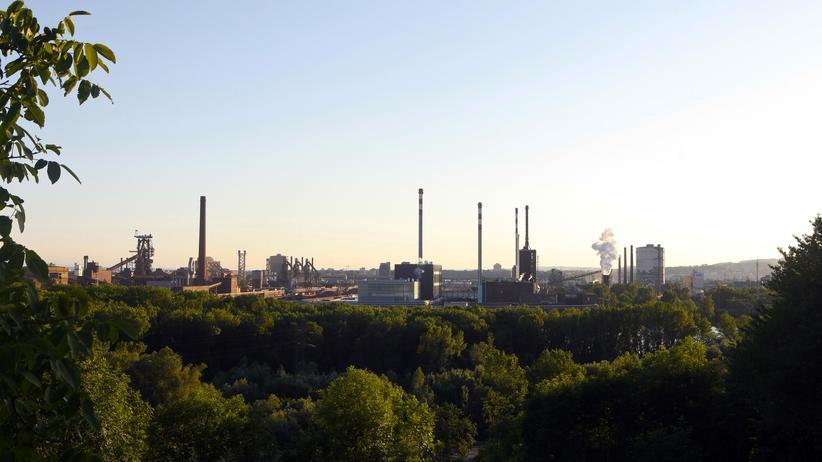 Roman Sandgruber: Blick auf die Voestalpine-Stahlwerke in Linz