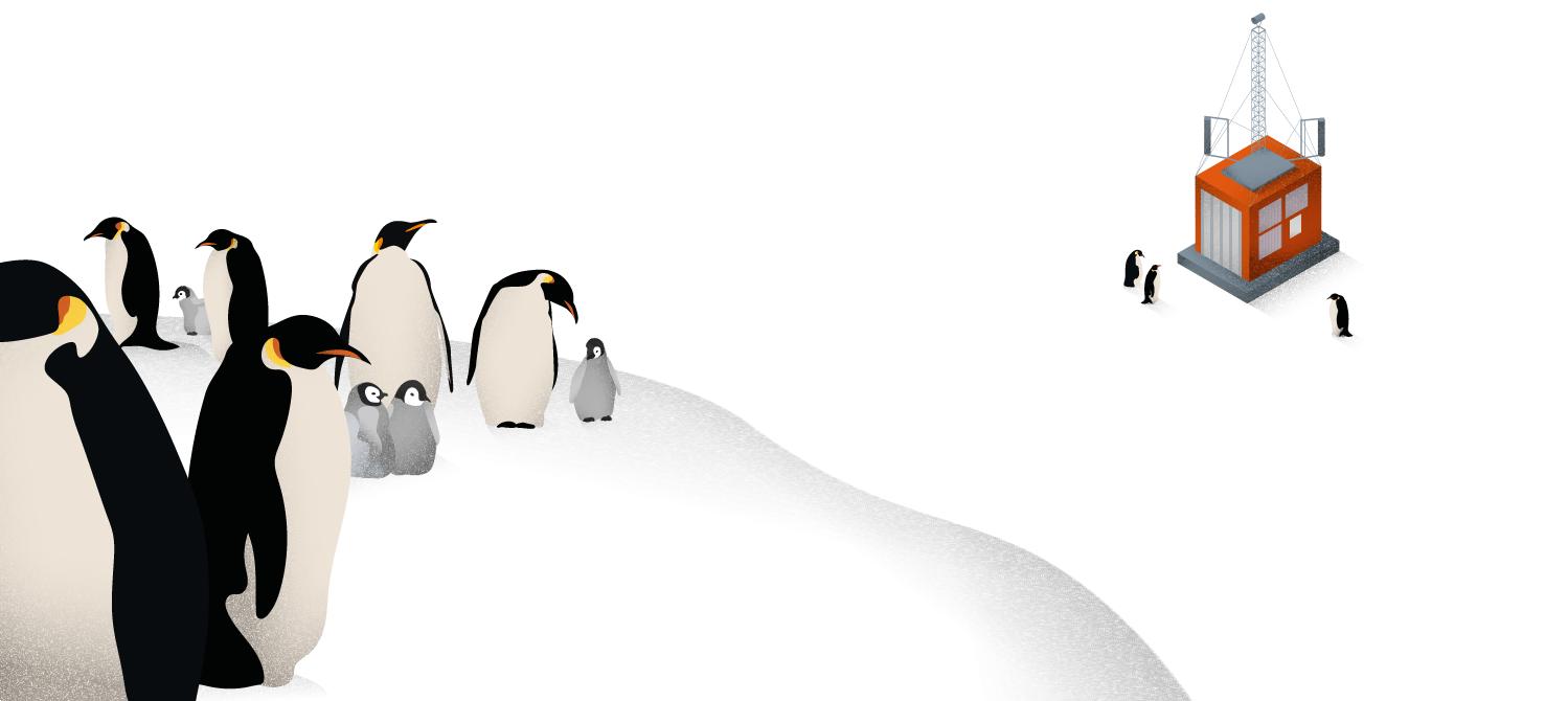 """Antarktis Station """"Neumayer III"""": In wenigen Kilometern Entfernung brütet eine große Kolonie Kaiserpinguine. Gegen Wind und Kälte drängen sich die Tiere eng zusammen, in sogenannten Huddles. Ein automatisches Observatorium beobachtet die Tiere, um die Organisation der Huddles zu verstehen."""