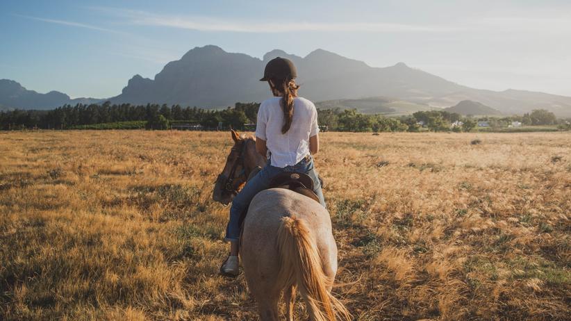 Pferde: Das eigene Pferd: ein Wunder für die geistige Gesundheit?