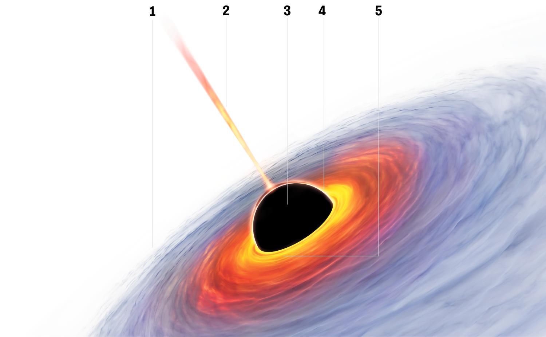 Schwarze Löcher: Supermassereiche Schwarze Löcher sitzen inmitten spiralförmiger und elliptischer Galaxien. So stellt man sich ihren Aufbau vor: