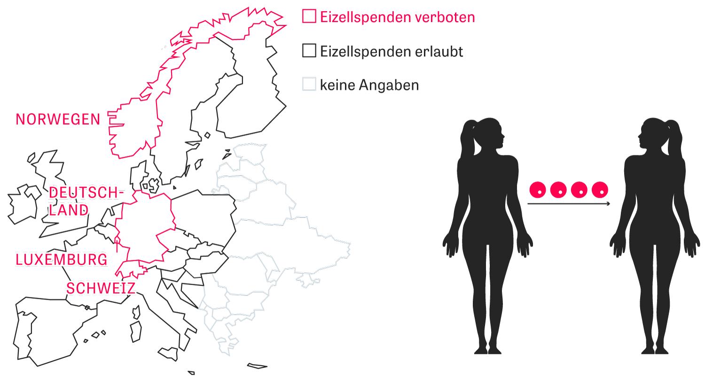 Künstliche Befruchtung: Unfruchtbare Frauen können mit gespendeten Eizellen noch ein Kind bekommen. Fast überall in Europa ist das Verfahren erlaubt, in Deutschland verboten.