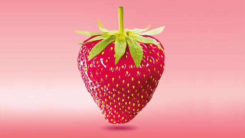 Erdbeeren: Die Deutschen kriegen nicht genug