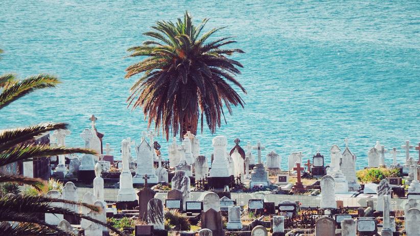 Klimaschutz: Los, komm, wir sterben endlich aus!