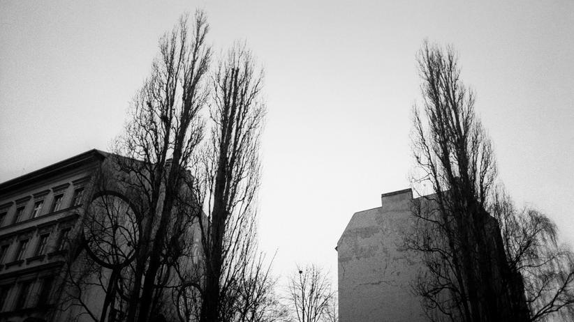 """""""Berlin Prepper"""": Hass und Kommentare"""