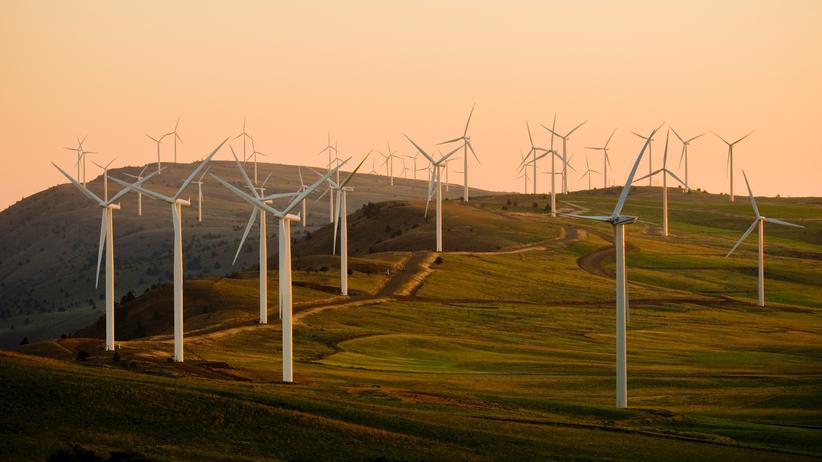 """Isabel Schnabel: """"Eine CO2-neutrale Wirtschaft ist möglich"""""""