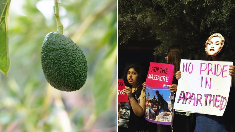 BDS-Bewegung: Was hat diese Avocado mit Antisemitismus zu tun?