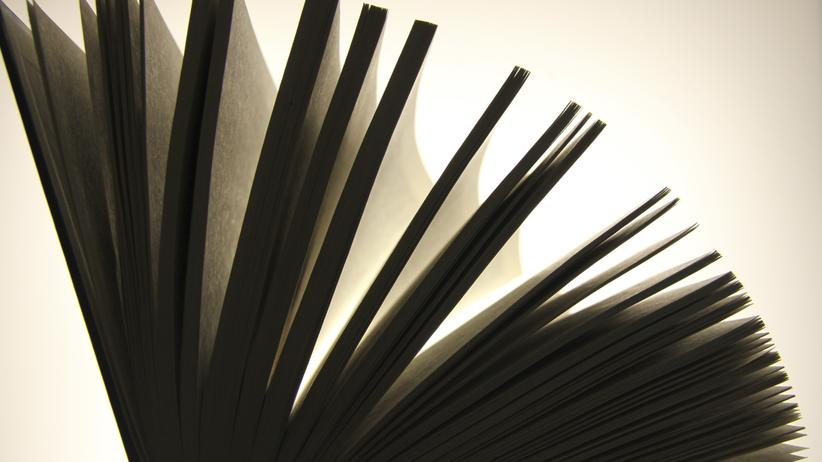 Plagiatsvorwürfe gegen Cornelia Koppetsch: Ein fallengelassenes Buch