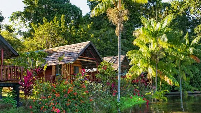 Suriname – Natur in Südamerika