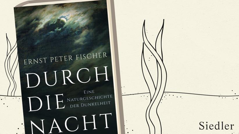 Ernst Peter Fischer: Ein Plädoyer für die Dunkelheit