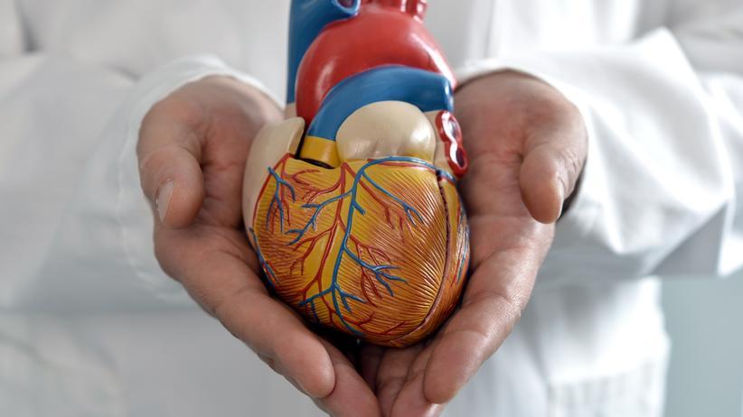 Herzfunktion: Beispiel Aortenklappe: Mit einer Reihe von Informationsfilmen gibt die Spezialklinik HDZ NRW Einblicke in das komplexe Behandlungsspektrum bei Herzerkrankungen und Diabetes.