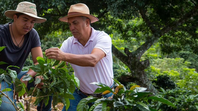 Entdecken Sie Nespresso's Nachhaltigkeitsvision