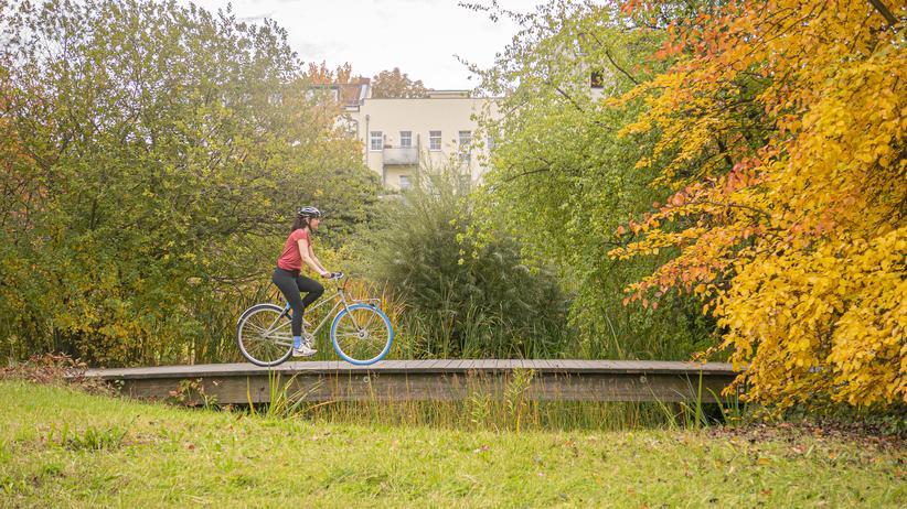 Swapfiets: Mit dem Fahrrad zur Arbeit, zum Sport, abends zum Supermarkt – und sich trotzdem nicht darum kümmern müssen: Die Autorin fährt ein dauerhaft ausgeliehenes Fahrrad.