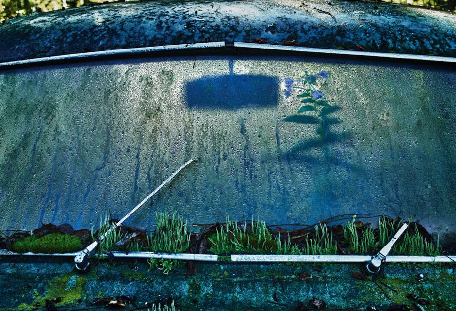 Autofriedhof Letzte Ausfahrt Unterholz Zeit Online