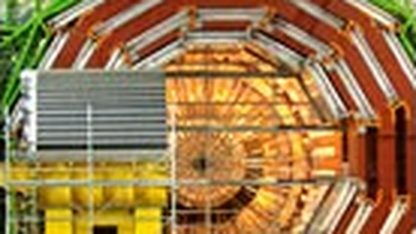 Physik: Gott im Teilchenzoo