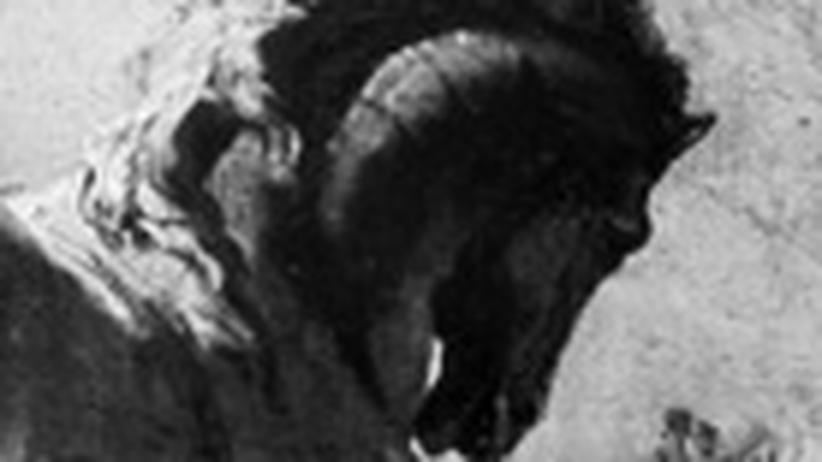 Philologie: Trojas strenger Wächter