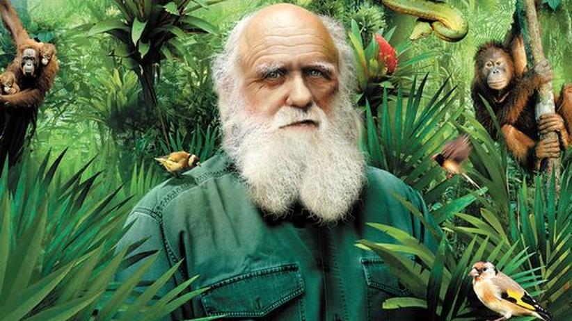"""150 Jahre """"Entstehung der Arten"""": Danke, Darwin!"""