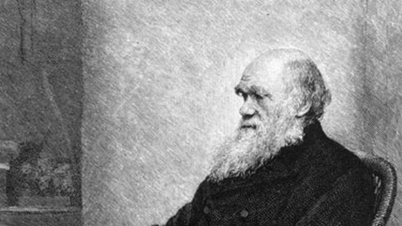 Charles Darwin: Das Leben stets im Blick