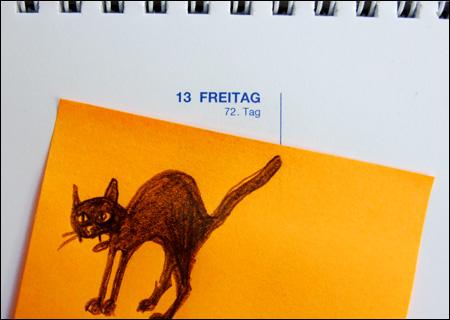 © Katze: Meike Gerstenberg; Foto: Marita Theiling