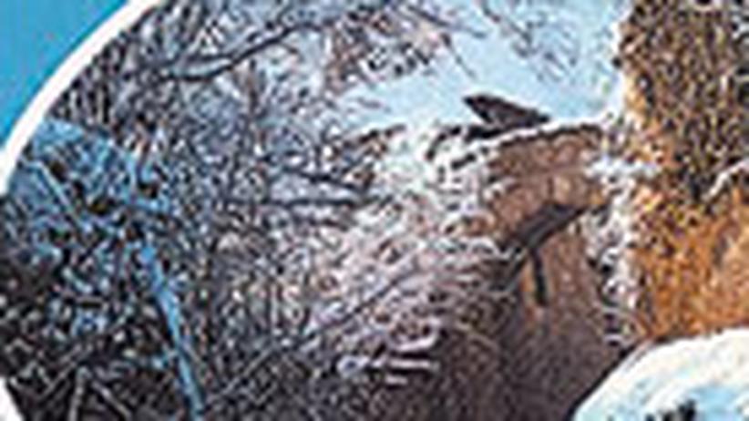 Platte meines Lebens (45): Die Liebe liebt das Wandern