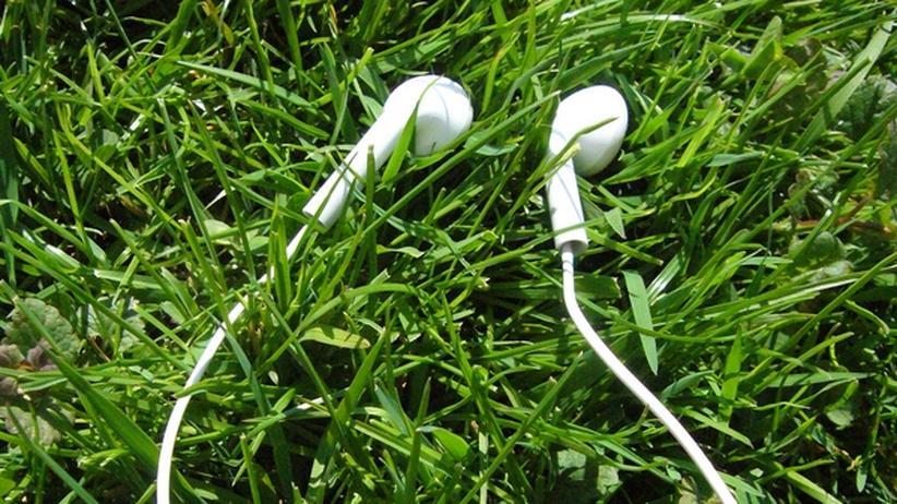 Gratis-Videos: Vorlesung für die Generation iPod