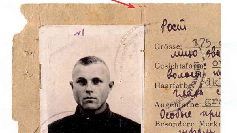 KZ-Wächter Demjanjuk: Mutmaßlicher NS-Verbrecher wird ausgeliefert