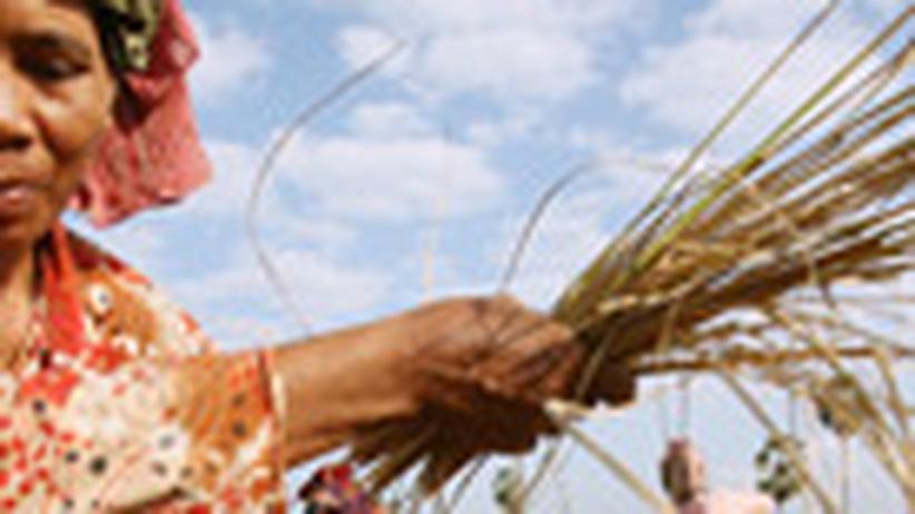 Landwirtschaft: Die neuen Eroberer