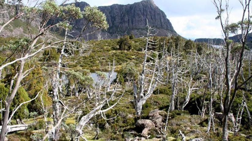 Australien: Des Teufels wildes Paradies