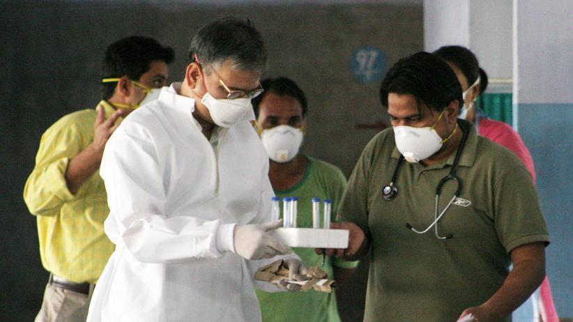 H1N1-Virus: Grippe zum Üben