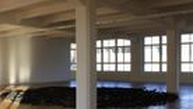 ZEIT-Museumsführer: Zeit und Licht für die Kunst