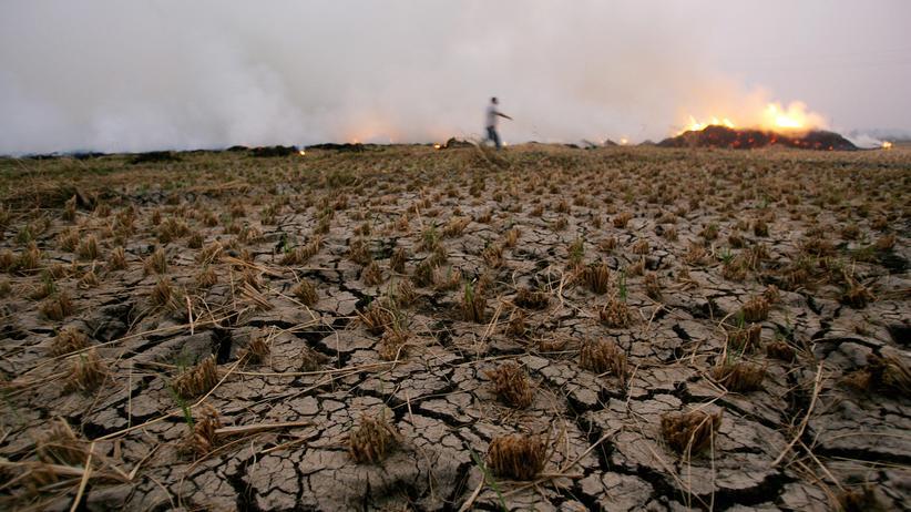Wasserknappheit: Bauer Abdelhamid und seine Pumpe