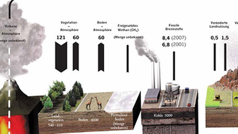 Kohlenstoff: Einmal Atmosphäre und zurück