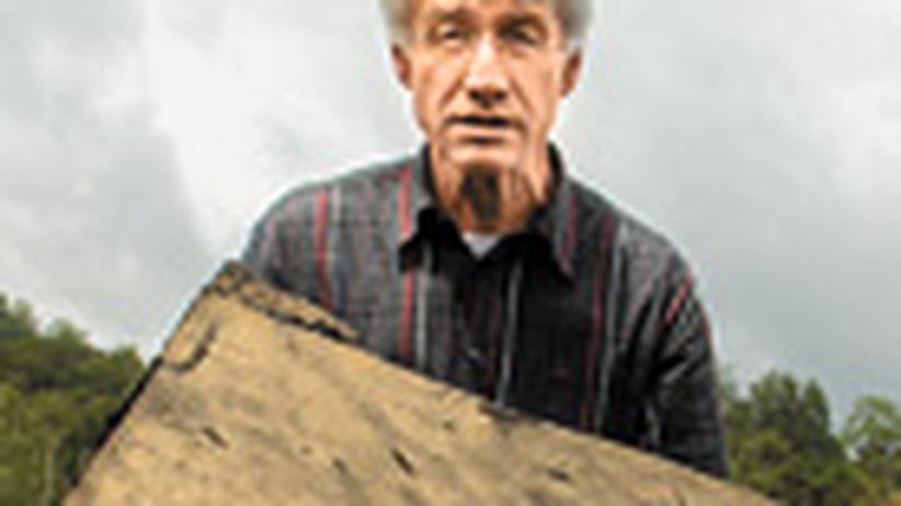 Paläontologie: Schatztruhe der Urzeit
