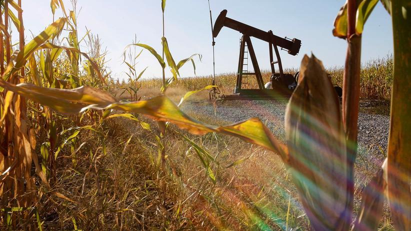 Biokraftstoff: Benzin aus Pflanzen-Abfall
