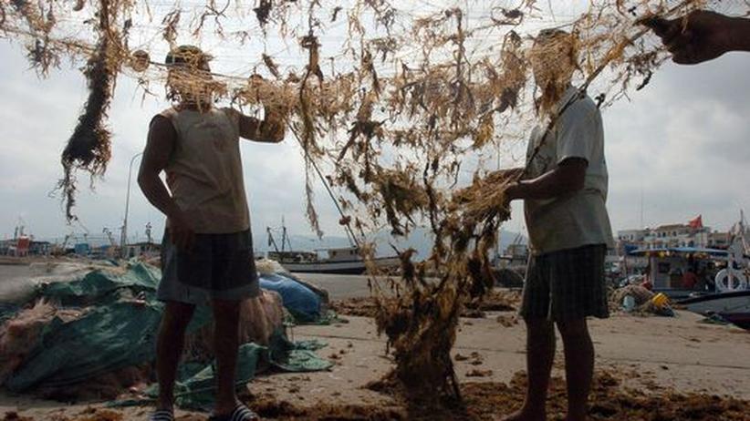 Flüchtlinge: Mitgehangen. Tunesiche Fischer dürfen nicht mehr fischen, weil sie Flüchtlinge in Seenot geholfen haben